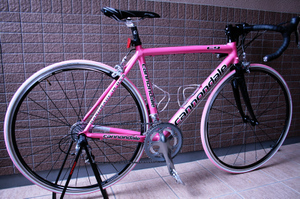 201003bike10