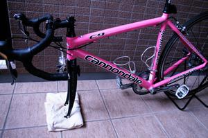 201003bike6