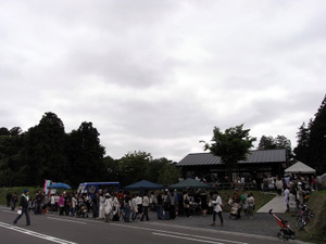201005izawa