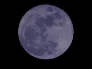 201007bluemoon