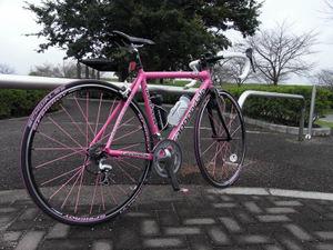201010bike19
