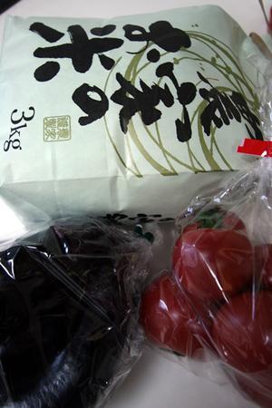 201105sakuragawa2
