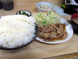 201302nishizawa3
