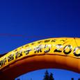 宇都宮餃子祭り2008