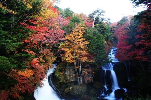 竜頭の滝 1