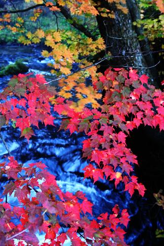 竜頭の滝 4